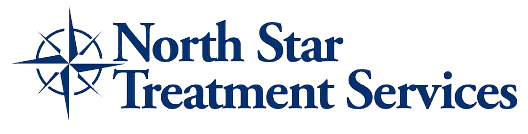 North Star Treatment Services